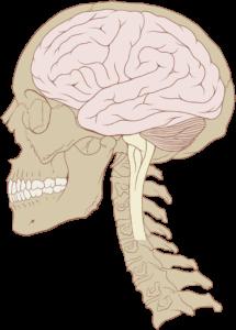 In the Quiet - Brain In Control